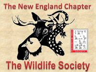 New England Chapter of The Wildlife Society